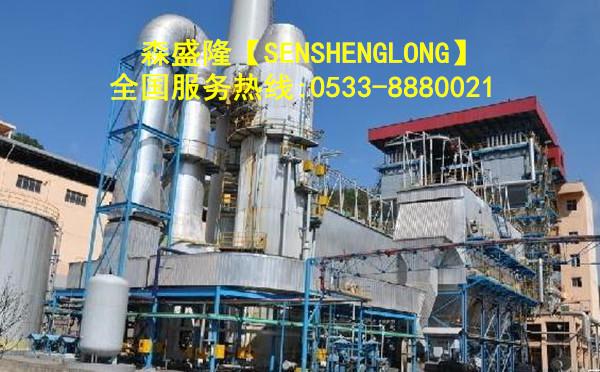 新疆昌吉锅炉阻垢剂应用实例