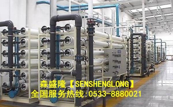 新疆反渗透阻垢剂大型反渗透设备应用